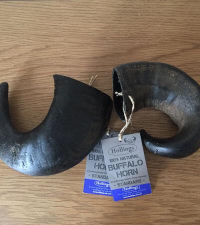 Buffalo Horns (standard)